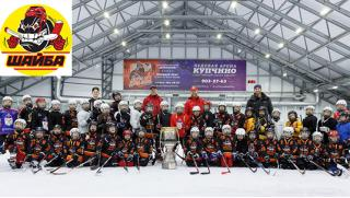 Абонементы на занятия хоккеем с шайбой для детей и взрослых в Хоккейной школе Шайба со скидкой до 50%! Шайбу, шайбу!