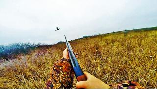Охотничий тур в течение 2 дней/1 ночи в отеле «Империал»! Программы на выбор: «Стрельба по тарелкам» или «Охота на фазана»!