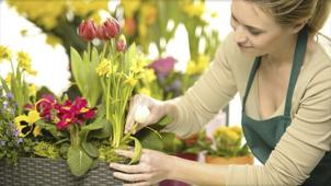 Flora Style! Скидка до 75% на профессиональные курсы на выбор! «Введение во флористику», «Флорист-декоратор» и не только!