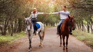 Эх, прокачусь! Прогулка в экипаже от конного клуба «Баллада»! Обед, экскурсия по подворью и мини-зоопарку, фото с животными!