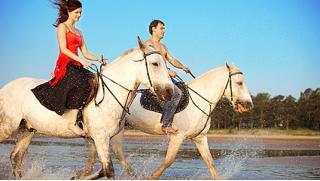 Конные прогулки для одного, двоих или четверых, катание в экипаже или на пони для детей в клубе «Гвардия»! Скидка до 77%!