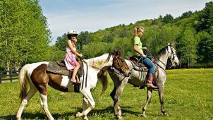 Твоя гармония! Уроки верховой езды или экскурсия «Знакомство с лошадью» в школе верховой езды «Гармония»! Скидка 50%!