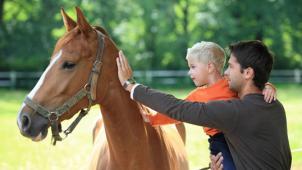 Едем на хутор! Конная прогулка или романтическая прогулка на лошадях от конного двора «Хутор»! А еще квесты! Скидка 63%!