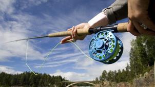 Вся рыба у нас! Рыбалка на весь день в ближайшем Подмосковье на базе «Рыболов Сосенки» со скидкой 50%!