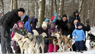 К хаски и оленям! Экскурсия «Знакомство с северными оленями и ездовыми собаками хаски» или фотосессия от WalkService!